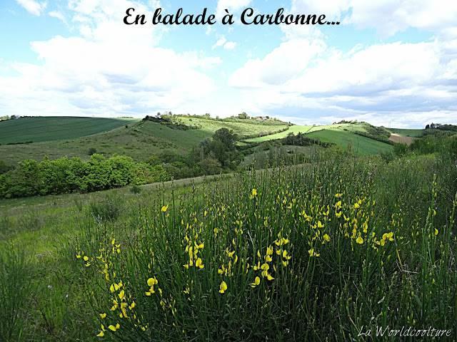 Balades à Carbonne Haute Garonne
