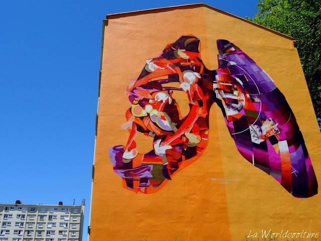 graffiti street art Toulouse Rose Beton SatOne et Wow