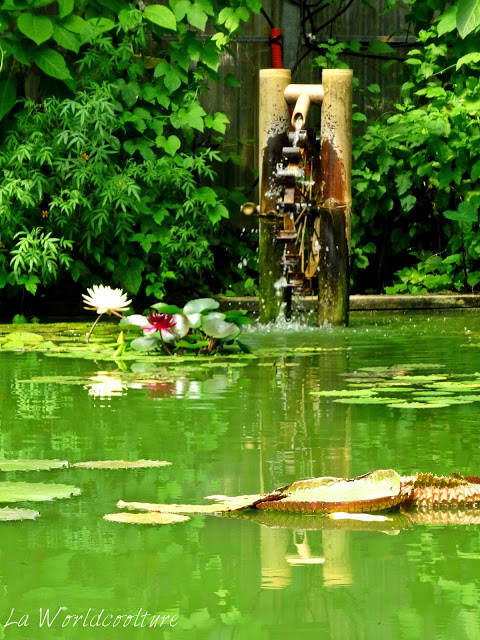 Jardins des Martels Tarn France serre exotique aquatique