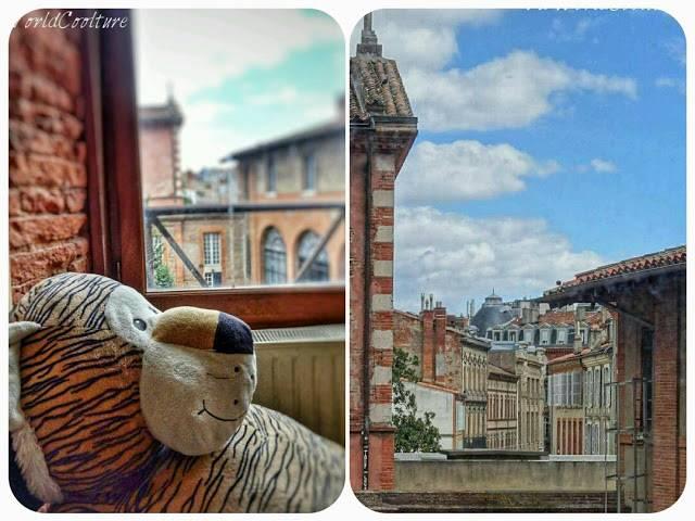 vue depuis la bibliothèque de l'esav Toulouse France