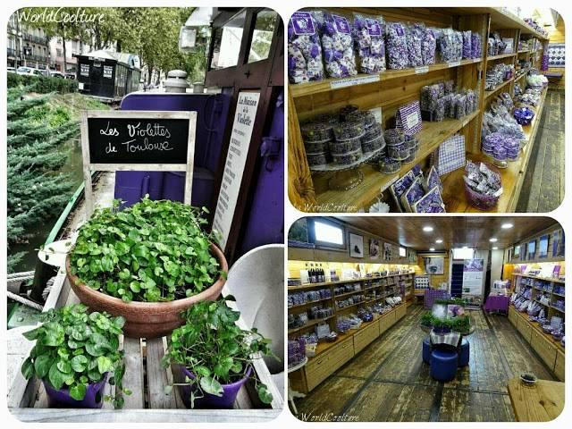 maison de la violette toulouse france
