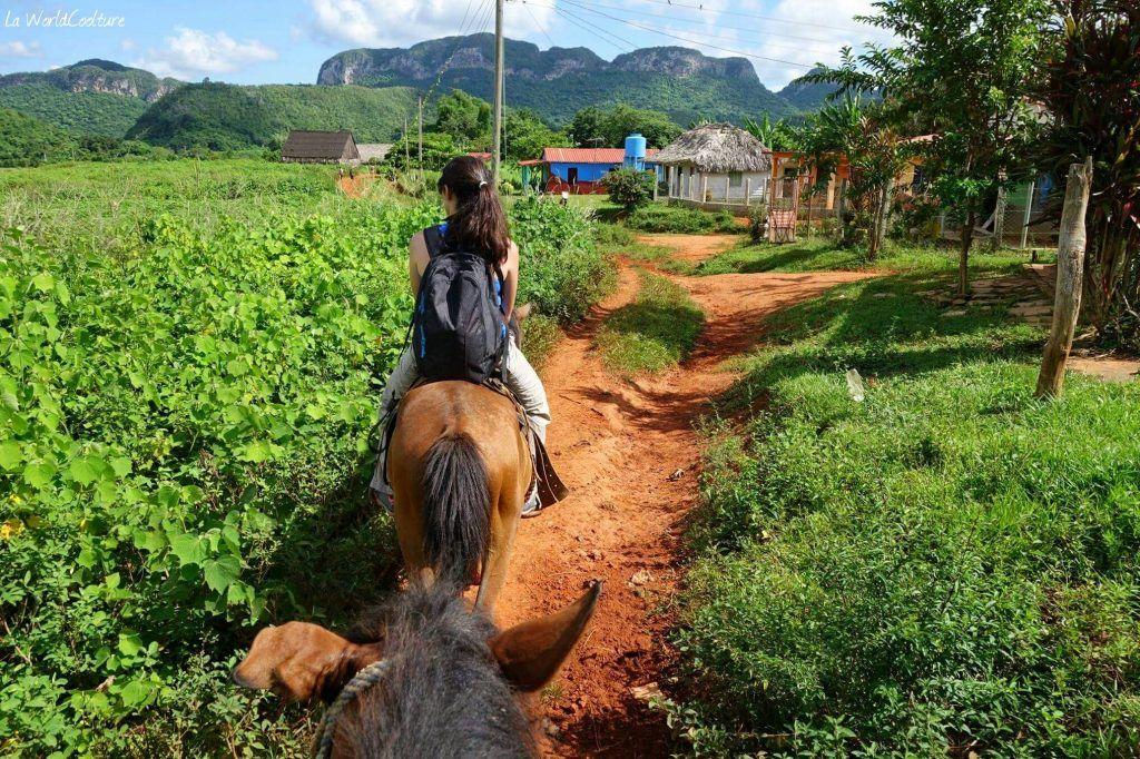 Balade à cheval vallee del silencio Vinales Cuba