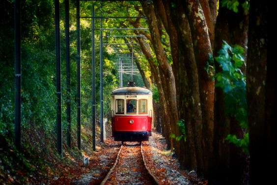 tram-electrico-sintra