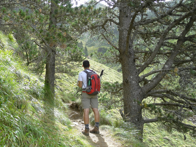 avis-randonnée-lac-vert-pyrénées