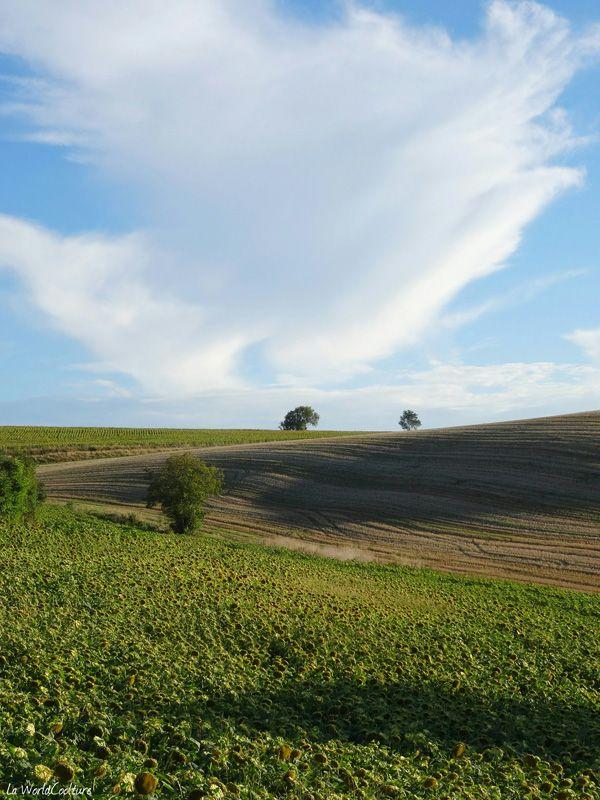champs-lauragais-slowtravel-occitanie