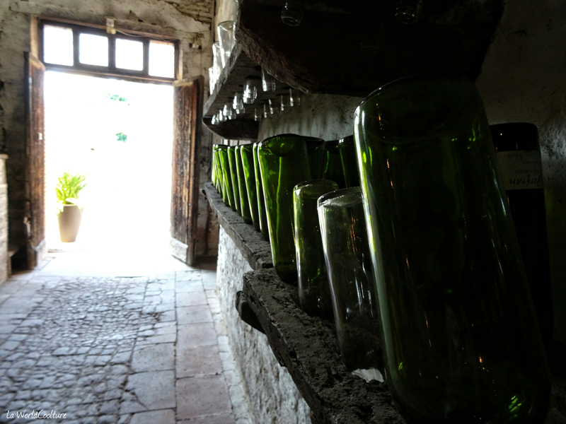 Oenotourisme en Haute Garonne où et comment visiter les vignobles du frontonnais ?