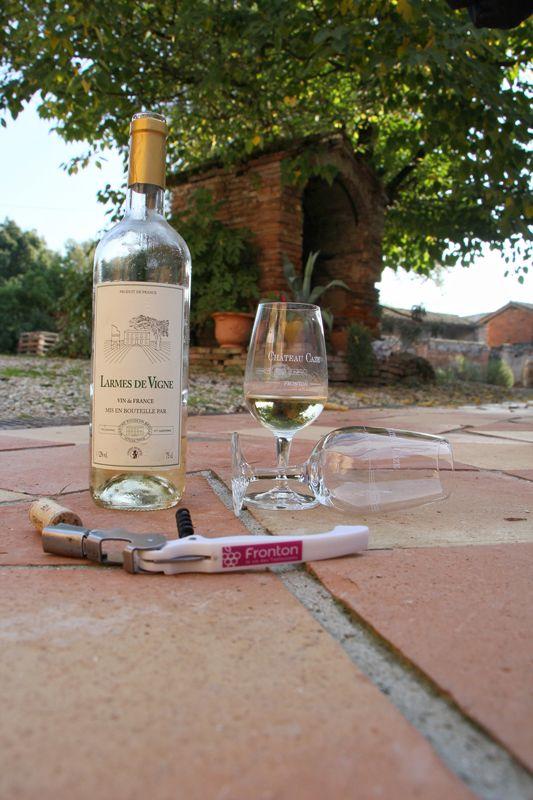Oenotourisme en Haute-Garonne visite degustation chateau caze