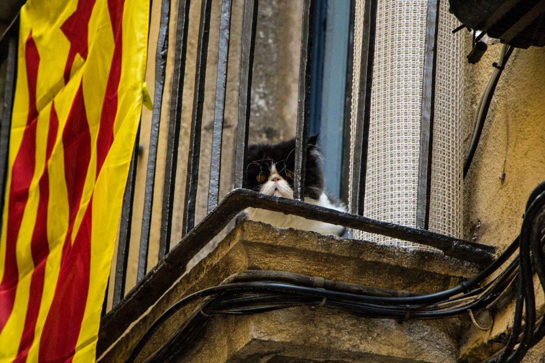 visiter-Call-quartier-juif-Gérone-Catalogne