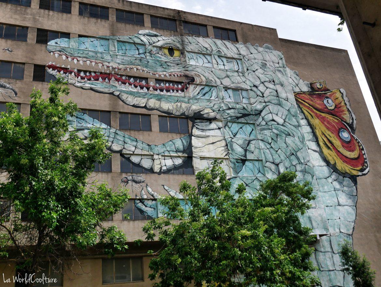 fresque-street-art-centre-historique-Gérone
