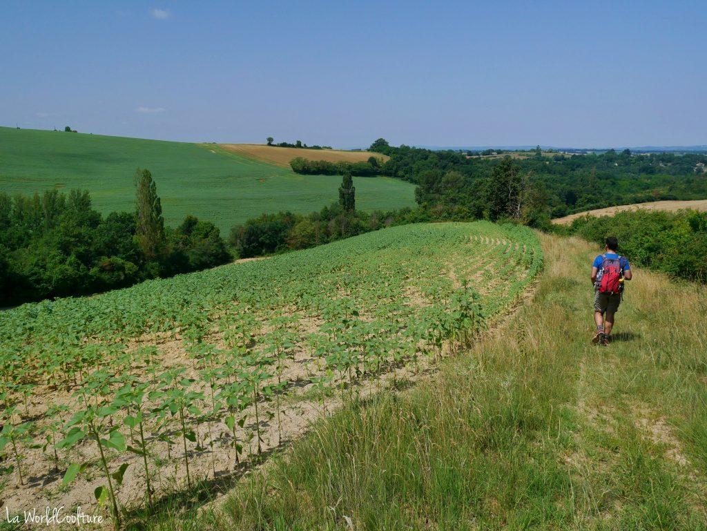 Rieux Volvestre Haute-Garonne circuit de randonnée