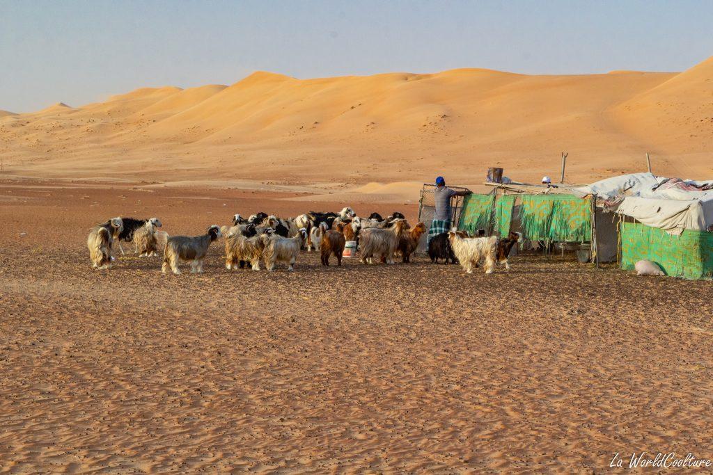 passer une nuit dans le désert de Wahiba Sands à Oman