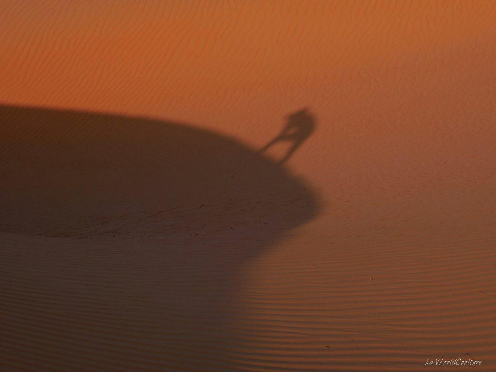 Précautions à prendre dans le désert de Wahiba Sands à Oman