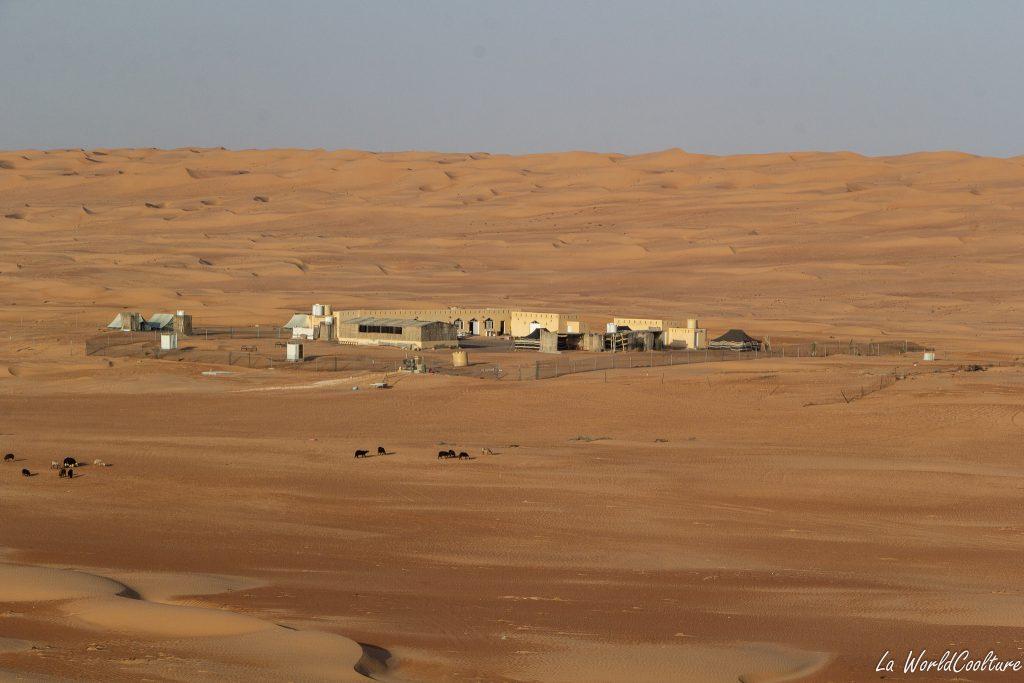 Bon campement dans le désert de Wahiba Sands : Rustic Bedouin Camp