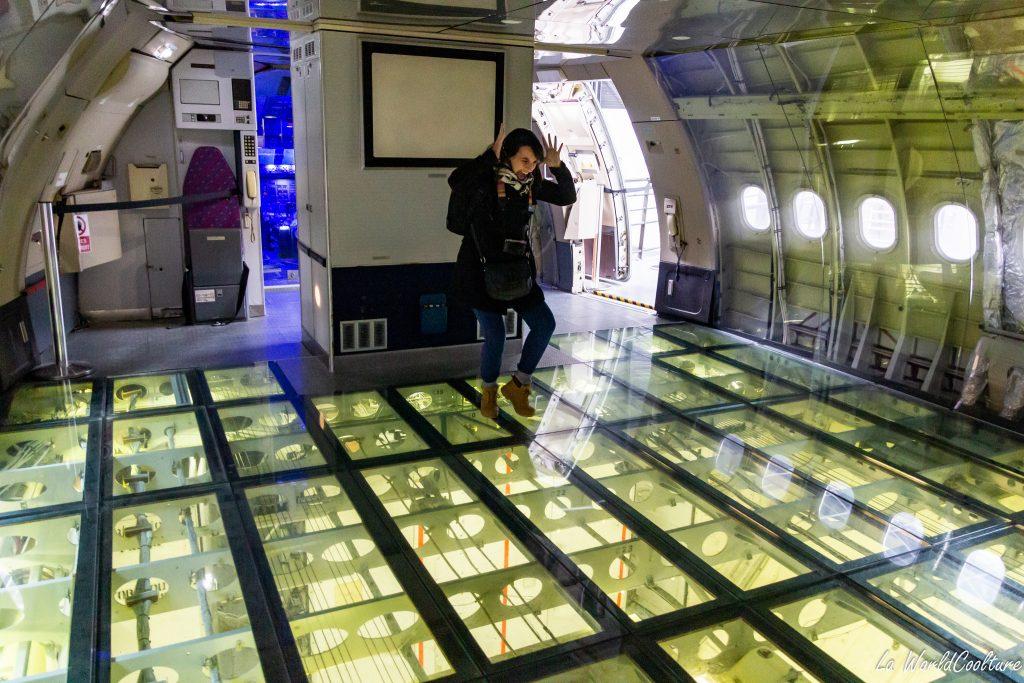 Visite du musée Aeroscopia à Toulouse