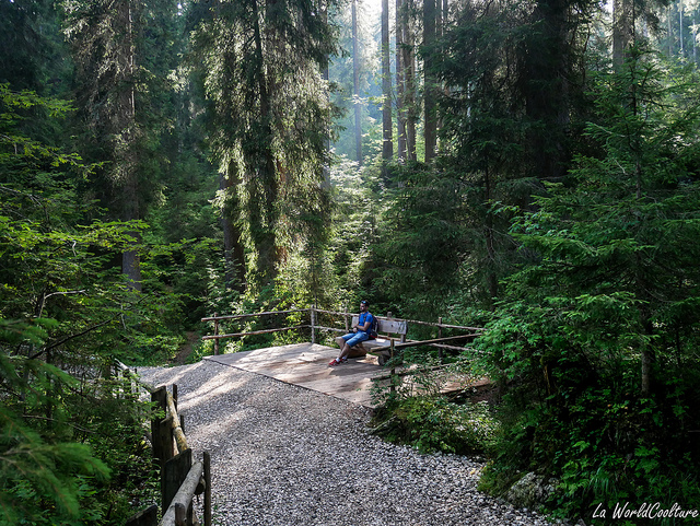 découvrir la nature des Dolomites