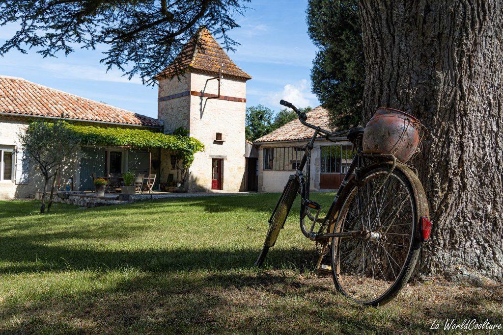 oenotourisme en Tarn-et-Garonne au domaine de Thermes