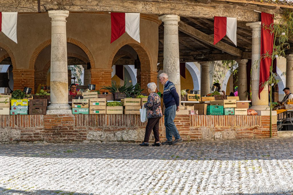 Quels beaux villages visiter en Tarn-et-Garonne ?
