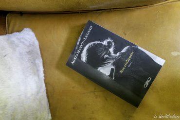 avis lecteur roman Nos résiliences Agnès Martin Lugand