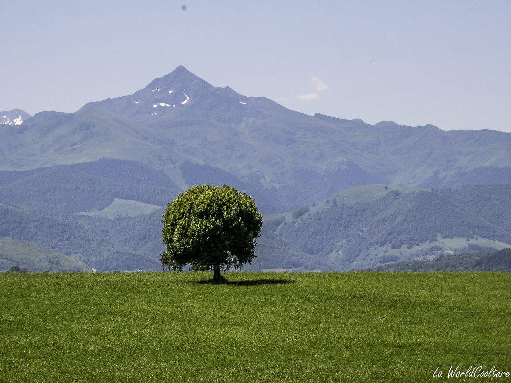 beau spot photo insolite Hautes Pyrenees